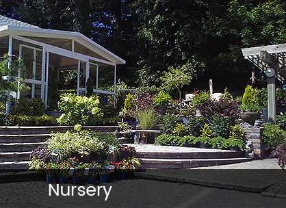 Southridge Farm and Nursery Nursery